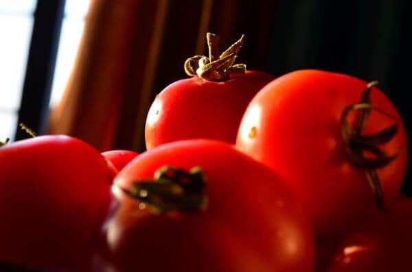 Tomato In Light photo