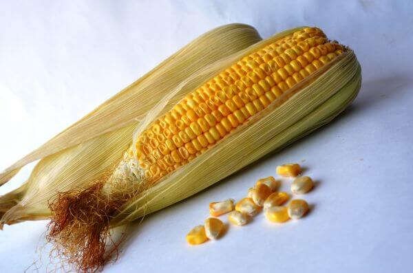 Diet Corn photo