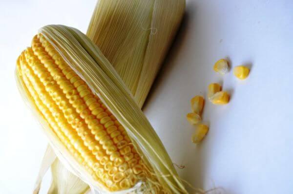 Maize Corn Pieces photo