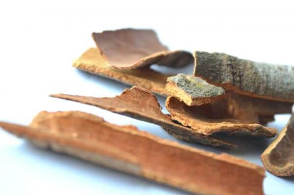 Cinnamon Curry Spices Sticks photo