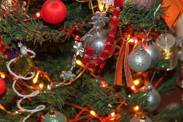 Christmas Tree Xmas Celebrations photo