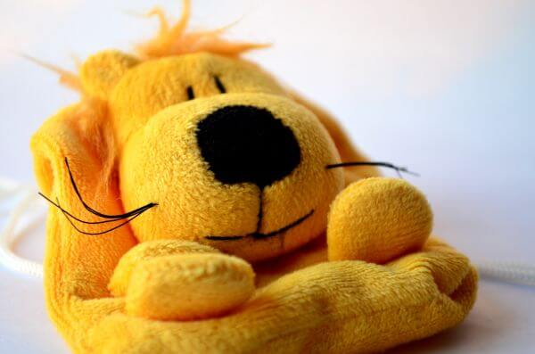 Cute Dog Soft Toy photo