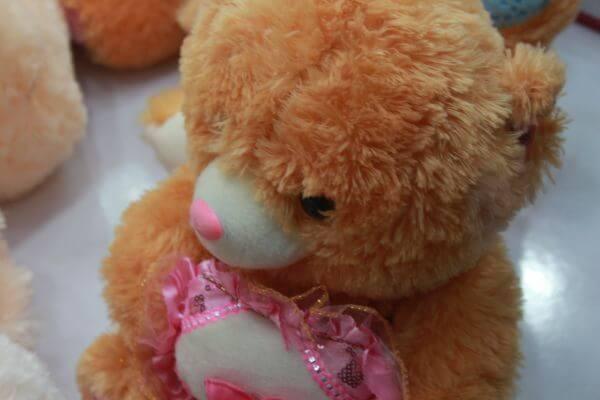 Cute Teddy Bear photo