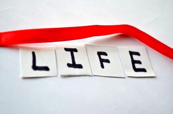 Life Paper Pen photo