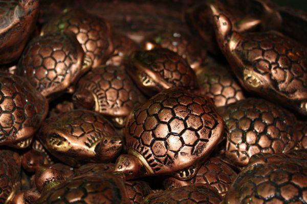 Metal Tortoises Feng Shui photo