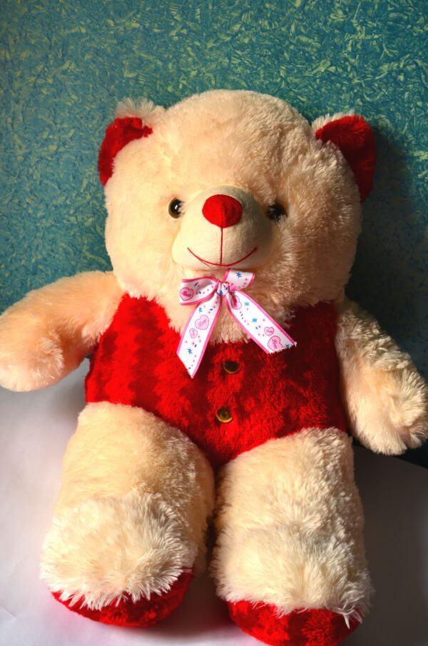 Cute Teddy Bear Toy photo