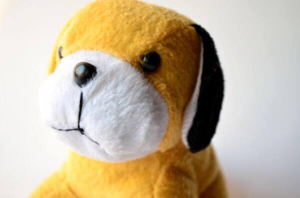 Cute Yellow Doggy photo