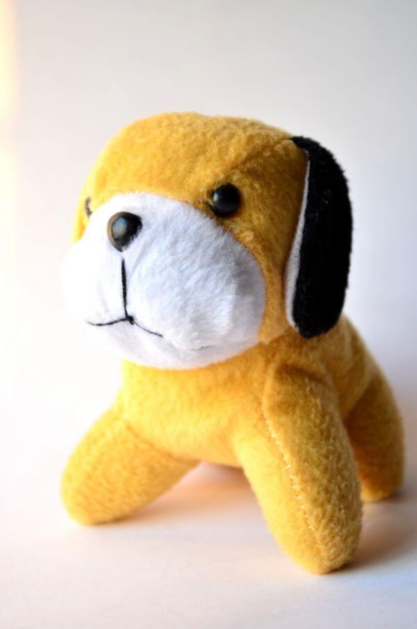 Kids Toys Dog photo