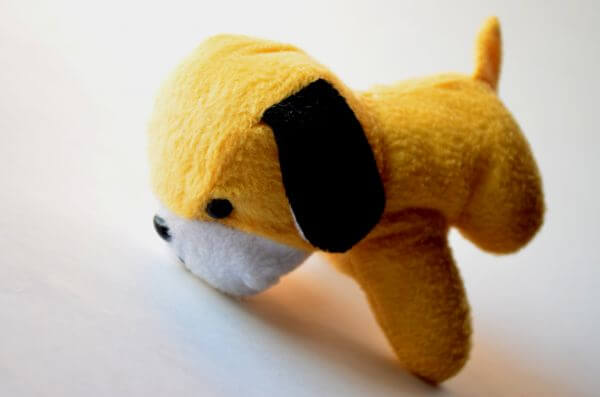 Yellow Dog Cute photo