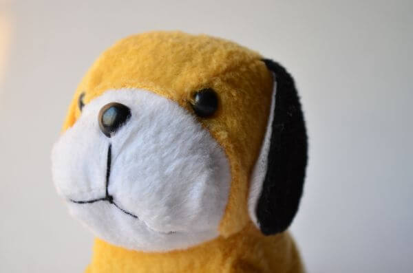 Yellow Puppy photo
