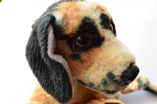 Puppy Dog Sad photo