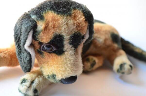 Sad Dog Soft Toy photo
