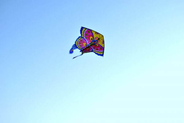 Butterfly Shaped Kite photo