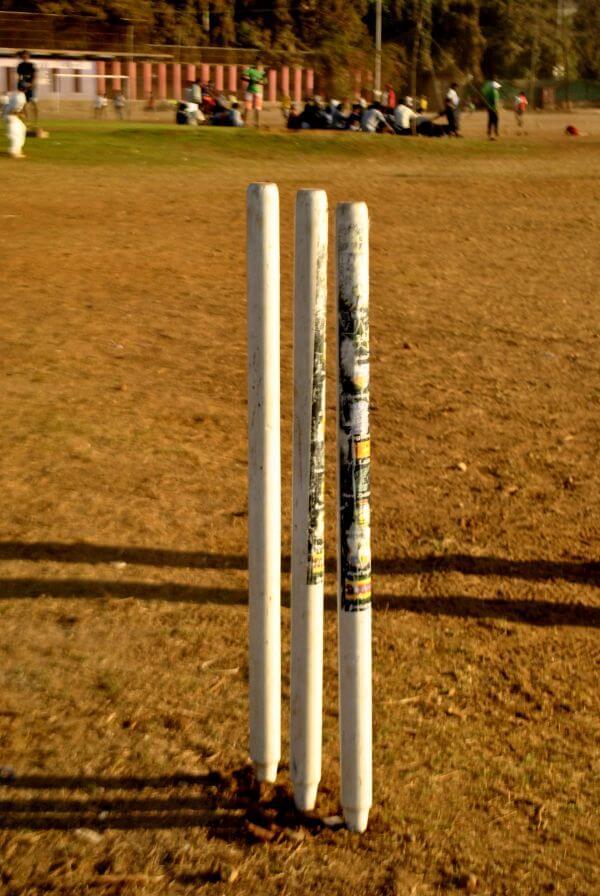 Cricket Pitch Stumps photo