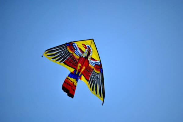 Eagle Kite photo