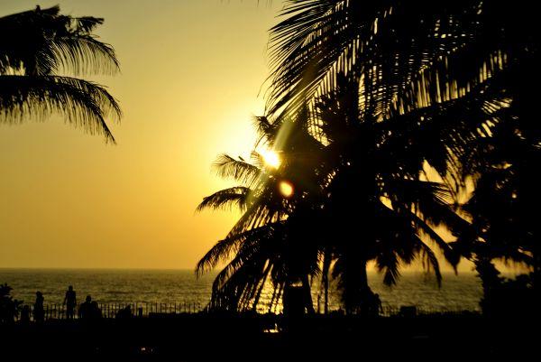 Sunset City Promenade photo
