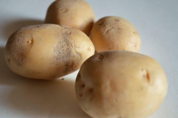 Potato Bunch 2 photo