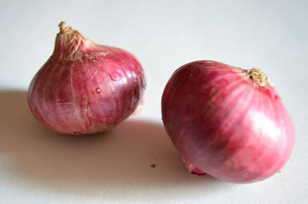 Two Onions Vegetables photo