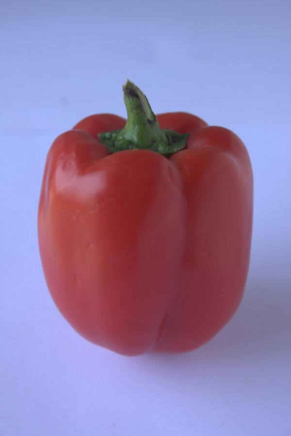 Bell Pepper Red photo