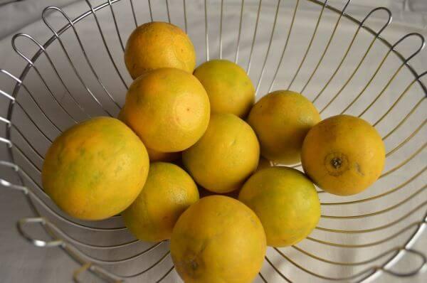 Lime Basket 2 photo