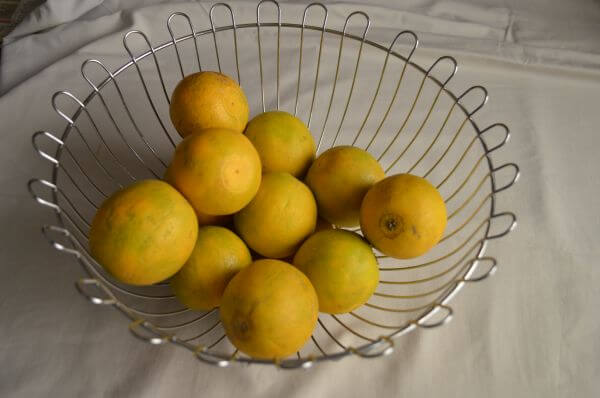 Lime Basket photo