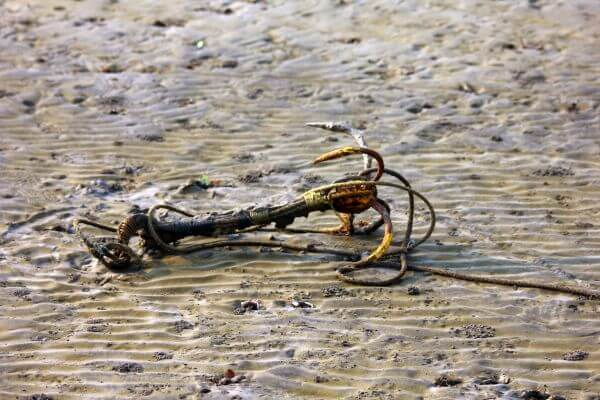 Anchor Sand Sea photo