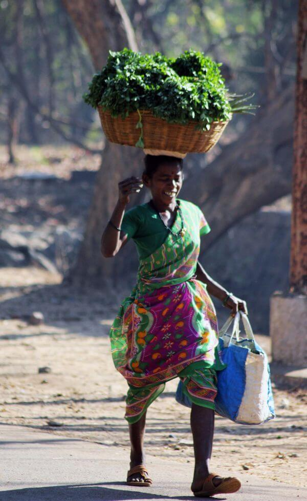 Indian Vegetable Seller photo