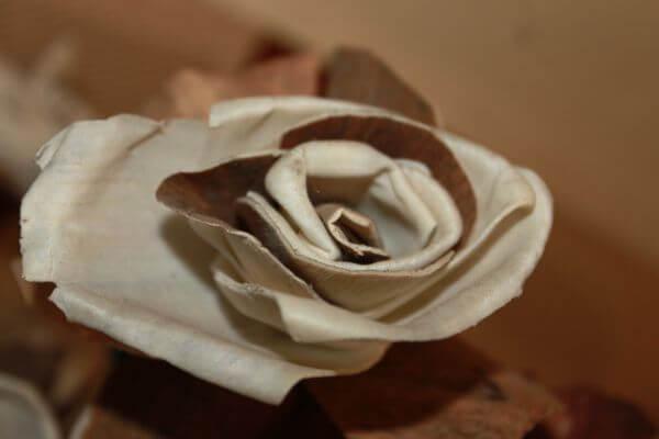Flower Artificial photo
