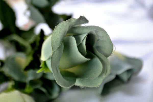 Cloth Green Rose photo