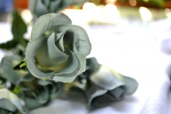 Cloth Rose photo