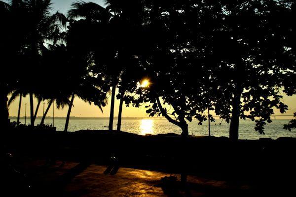 Garden Sea View photo