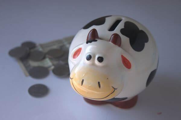 Piggy Bank Money Save photo