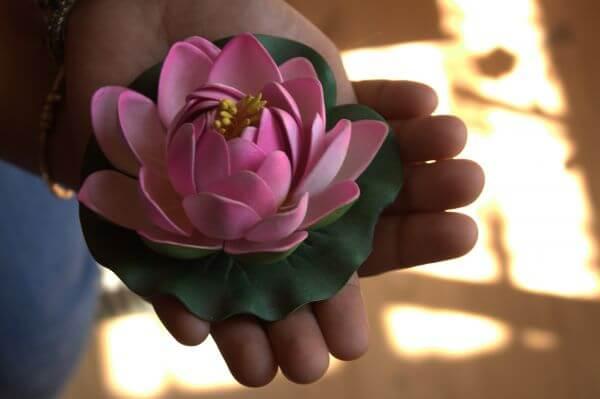 Lotus Model In Hand photo