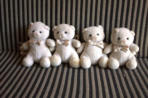 Teddy Bears Cute Children photo