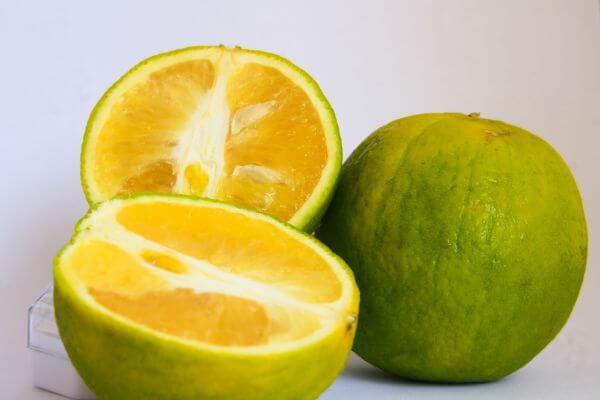 Lime Cut Fruit Citrus photo