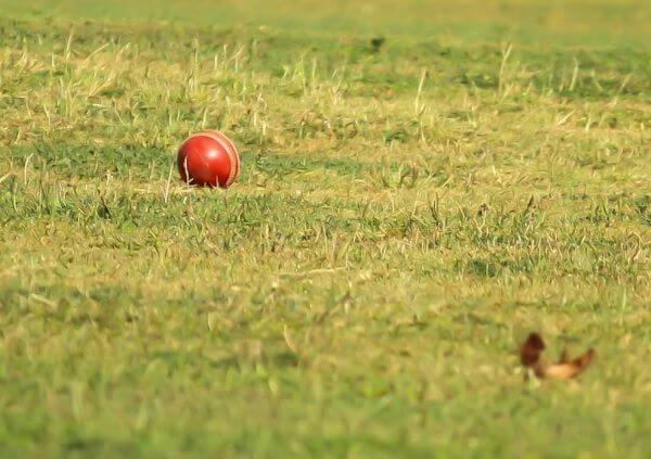 Cricket New Ball photo