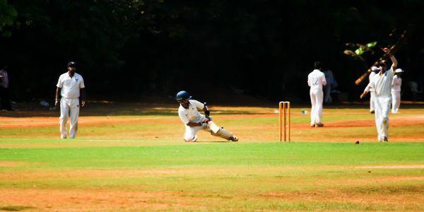 Cricket Field photo