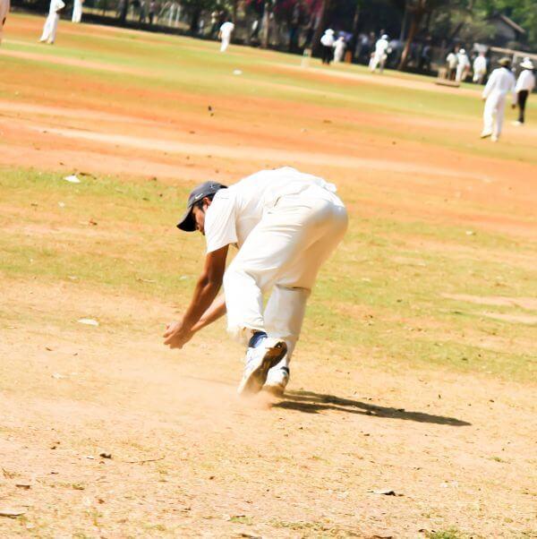 Cricket Fielding photo