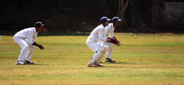 Cricket Wicket Keeping photo