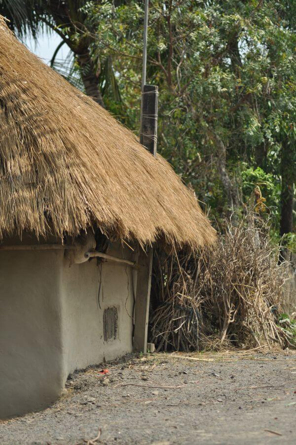 Village Hut India photo