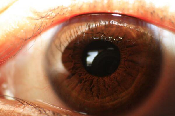 Eye Closeup photo