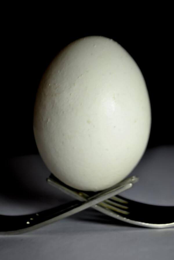 Egg Fork 2 photo