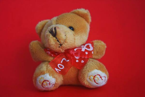 Teddy Bear Cute Love photo