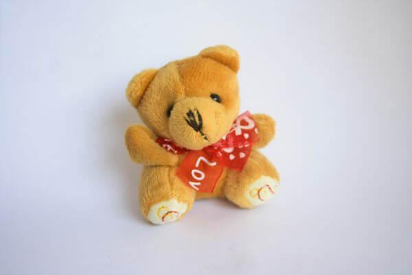 Teddy Love photo