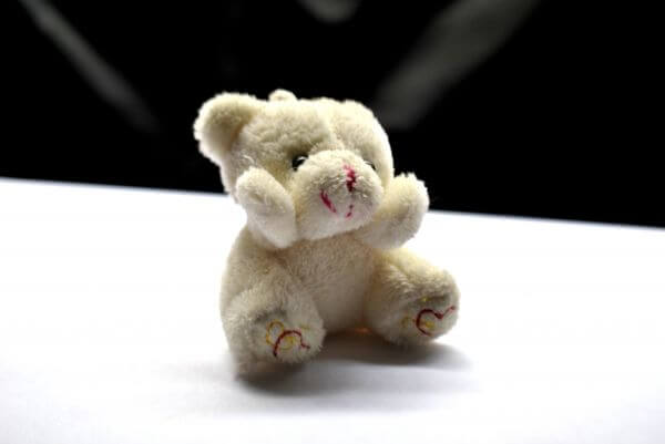 Soft Toy Cute photo
