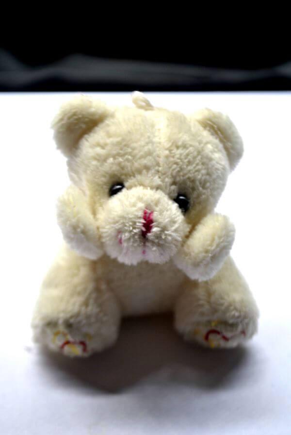 Soft Toy Teddy Bear photo