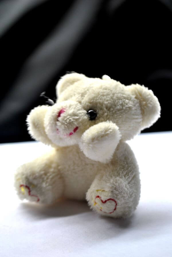 Teddy Bear Cute photo