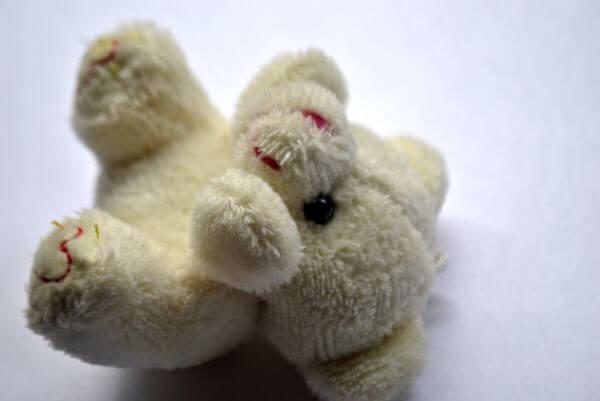 Teddy Bear On Ground photo