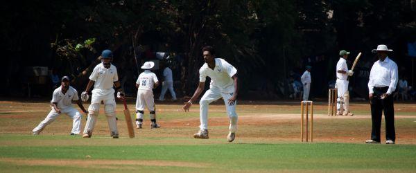 Cricket Field Action photo