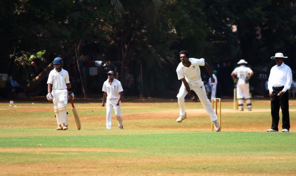 Cricket photo